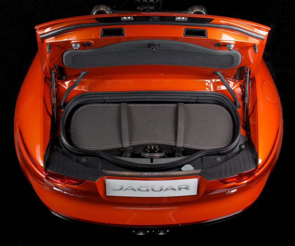 Moynat Jaguar Trunk